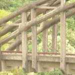 Ponte Brasile